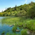 Landscape-Photography-Radisson-SAS-Cavan-Lake